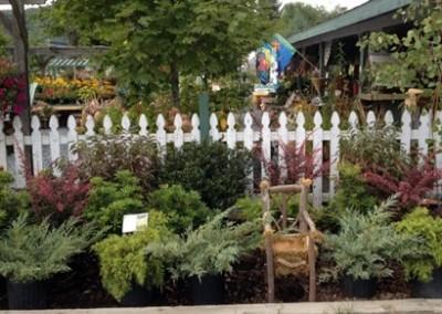 shrubs_web2